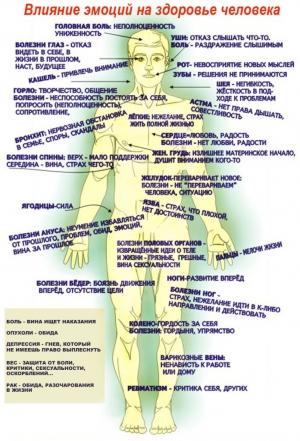 Истоки болезней